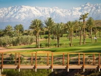 Golf pro in most beautiful greens of Morocco